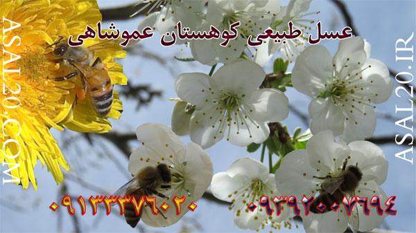 بهترین برند عسل ایران ، معروف ترین مارک عسل ایران
