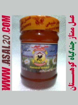 عسل طبیعی چندگیاه چندگل
