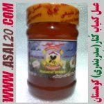 عسل طبیعی کنار سدر بندری