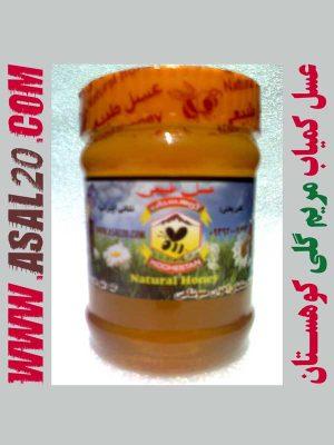 عسل طبیعی مریم گلی